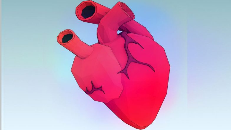 World's smallest heart pump that supports failing heart to recover, used for first time in India